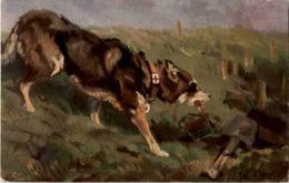 Der Sanitätshunde Im Felde - Feldpost - Guerra 1914-18