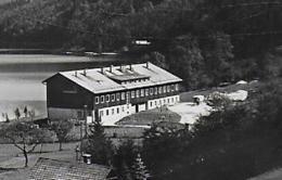 AK 0081  Lunz Am See - Jugendheim / Verlag Mark Um 1960 - Lunz Am See