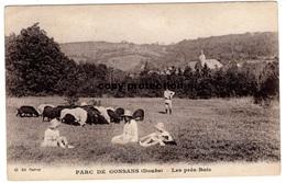 Parc De Gonsans (Doubs) Les Pres Bois, Alte Ansichtskarte - Baume Les Dames