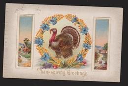 Thanksgiving Greetings - Turkey & Flowers - Used - Embossed - Thanksgiving