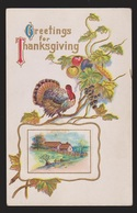 Thanksgiving Greetings - Turkey & Fruit - Used 1911 - Embossed - Thanksgiving