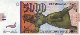 * MACEDONIA 5000 ДЕНАРИ (DENARI) 1996 P-19a UNC [MK211a] - Macedonië