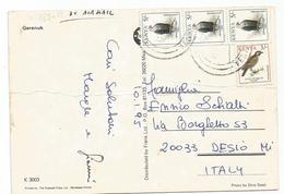 V2881 Kenya - Nice Stamps Timbres Francobolli - Gerenuk / Viaggiata 1995 - Kenia (1963-...)