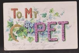 General Greetings - To My Pet Flowers - Used 1908 - Embossed - Greetings From...