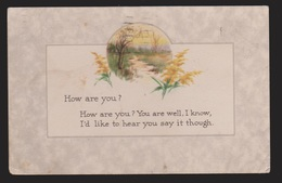General Greetings - How Are You Flowers - Used 1917 - Greetings From...
