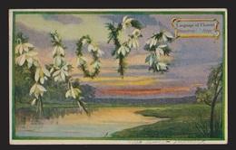 General Greetings - Hope Language Of Flowers - Used 1910 - Greetings From...