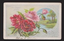 General Greetings - Flowers - Used 1913 - Embossed - Greetings From...