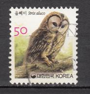 Corée, Korea, Hibou, Owl, Rapace, Oiseau, Bird - Owls