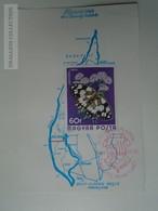 D161767   Commemorative - Hungary - RÁCKEVE Map Ráckevei Napok 1975 Duna - Feuillets Souvenir