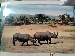 RINOCERONTE RHINOCEROS  STAMP TIMBRE SELO KENIA UGANDA TANZANIA  30 C Shell 1 OAU SUMMIT KAMPALA GX5745 - Rhinocéros