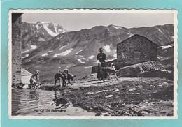 Old Post Card Of Auberge De L'Hospice, Grand St Bernard, Switzerland,R66. - Other