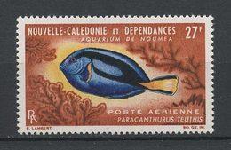 CALEDONIE 1965 PA N° 77 ** Neuf MNH Superbe C 9 € Poissons Fishes Aquarium Nouméa Paracanthurus Teuthis - New Caledonia