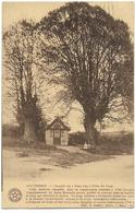 LOUVEIGNE : Chapelle Du Trau Leu (Trou Du Loup) - Liege