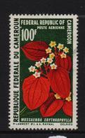 Cameroun 1970, Flower, Minr 609, Vfu - Cameroon (1960-...)