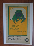 London / Zoo Underground, Regent's Park Of Camden Town / I Am At The Zoo, Bring Me A Fly (frog) --> Unwritten - London