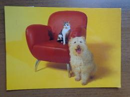 Nederland / Waalwijk-Amersfoort, Piet Klerkx Meubelwereld (zetel Met Hond En Kat) --> Beschreven - Waalwijk