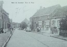 Bois De Lessines Rue Du Bois - Lessen
