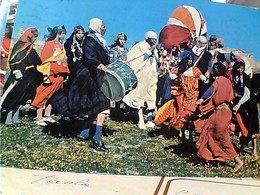 TUNISIA HAMMAMET  MARIAGE BEDOUIN  STAMP TIMBRE SELO 150 1981 GX5751 - Tunisia