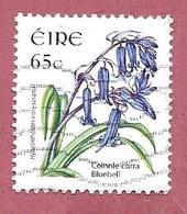 IRLANDA EIRE USATO - 2004 - FIORI SELVATICI - Bluebell - Hyacinthoides Non-scripta - 65 Ct - M. IE 1602 - 1949-... Repubblica D'Irlanda