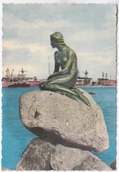 Copenhagen, View Of Langelinie, 1960 Used Postcard [22225] - Denmark