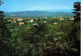 TRIESTE OPICINA CARTOLINA - Trieste