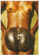 Seychelles Pre-2000s Postcard Nude Erotic Sexy Coco De Mer Unwritten Postcards Hartmut Evers - Seychelles
