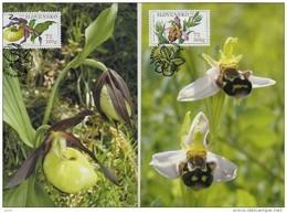 2 Cartes Maximum  2008  Orchidées (2) Abeilles - FDC