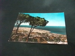 LIBANO LIBAN LEBANON BEYROUTH BEIRUT VISTA AEREA  SEEN FROM THE MOUNTAINS - Libano