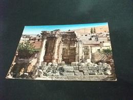 LIBANO LIBAN LEBANON BAALBECK THE TEMPLE OF VENUS - Libano