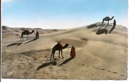 L74A792 - Scènes Et Types - Touaregs Dans Les Dunes - CAP N°6530 - Western Sahara