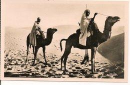 L74A793 - Scènes Et Types - Meharistes Traversant  Les Dunes - CAP N°1117 - Sahara Occidental