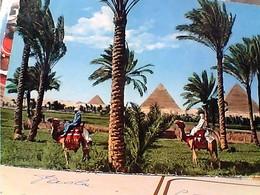 EGITTO EGYPT PIRAMIDI  STAMP TIMBRE SELO 35 M 1961 GX5752 - Cairo