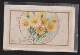 General Greetings - Good Luck Flowers - Used 1913 - Embossed - Greetings From...
