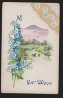 General Greetings - Best Wishes Flowers - Used - Embossed - Greetings From...