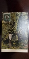 O) 1906 PANAMA, VASCO NUÑEZ DE BALBOA SC 186 1c Green, CULTING BANANAS POSTAL CARD XF - Panama