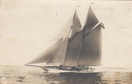 BARCA _ ANNI '20  /  Cartolina Fotografica - Segelboote