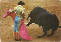 V2906 Corrida De Toros - Spagna Espana - Veronica / Viaggiata - Corrida