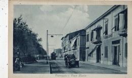 VIAREGGIO VIALE MANIN - Lucca