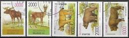 Bel1 Fauna 1995 Used-oblit. - Belarus