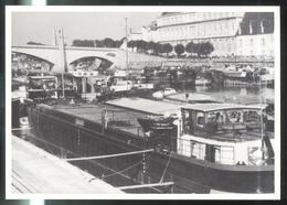 CPM Chalon Sur Saône - Grève Des Mariniers Juin 1984 - N° 88 Sur 250 Exemplaires - Chalon Sur Saone