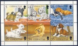 +H737. Gibraltar 1996. Dogs Puppies. Sheetlet. Michel 749-54 MNH(**) - Gibraltar