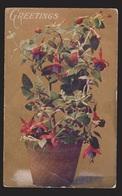 General Greetings - Greetings Flowers In Pot - Used - Edge Wear - Greetings From...