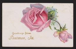 General Greetings - Roses - Used - Embossed - Greetings From...