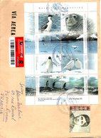 ARGENTINE. Feuillet De 2007 Sur Enveloppe Ayant Circulé. Faune De L'Antarctique. - Antarctic Wildlife