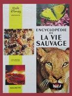 Encyclopédie De La Vie Sauvage - Par Walt Disney - Edition Hachette - Année 1972 -     (4460) - Encyclopedieën
