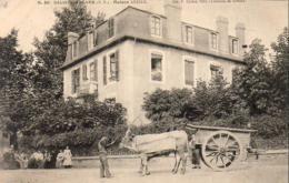 D64  SALIES DE BÉARN  Maison ARRIAIL .......... AVEC ATTELAGE - Attelages