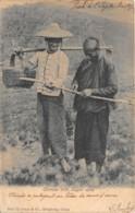Chine / Belle Oblitération - 56 - Chinese With Sugar Cane - Défaut - Défault - Carte Décollée - China