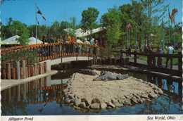 Alligator Pond - Sea World,Ohio - Other