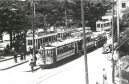 Algerie - Lot De 2 Photos De Tramways à Oran - Place D'Armes Ou Place Foch - Plaatsen