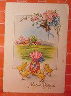 Auguri Buona Pasqua  Cartolina  1956 - Easter